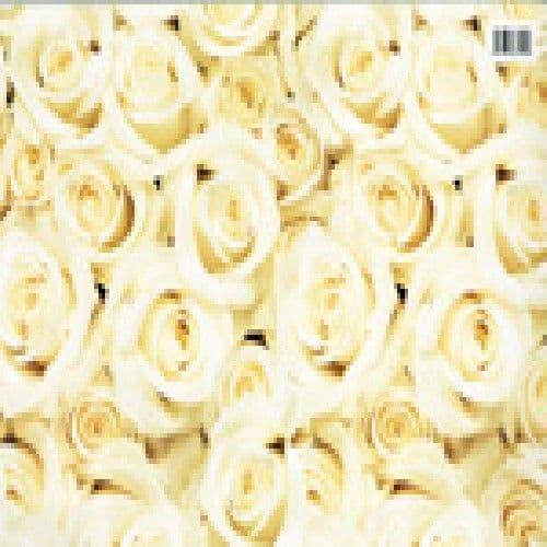 Cream Roses Wedding or Engagement Gift Wrap Paper by Hambledon Studios