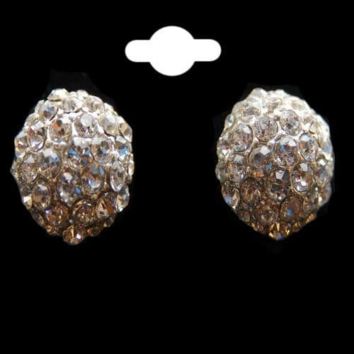 Silver Colour & Crystal Half Round Circle Earrings