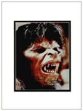 David Naughton Autograph Signed Photo -American Werewolf