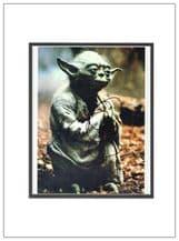 Frank Oz Autograph Signed Photo - Yoda