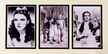 Judy Garland Memorabilia - Wizard of Oz