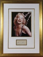 Marilyn Monroe Autograph Signed Display