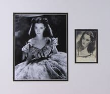 Vivien Leigh Autograph Signed Photo Display