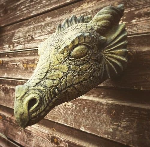 'Wyvern' Dragon head Wall plaque