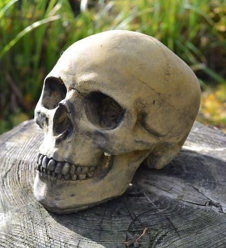 Human Skull stone ornament