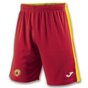 Avenue United FC Tokyo II Shorts - Youth