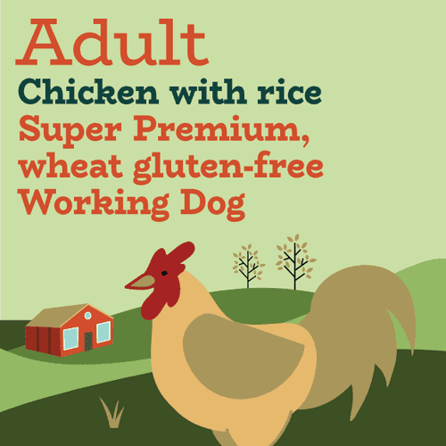 Chicken and rice working dog food
