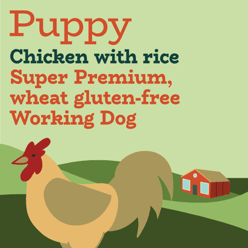 Chicken and rice working dog puppy food