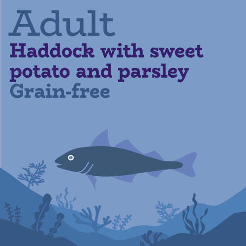Grain free haddock, sweet potato and parsley for dogs