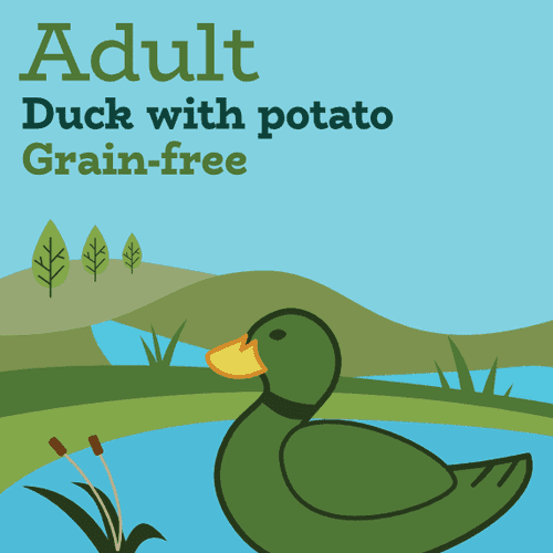 Limited ingredient grain free duck and potato dog food