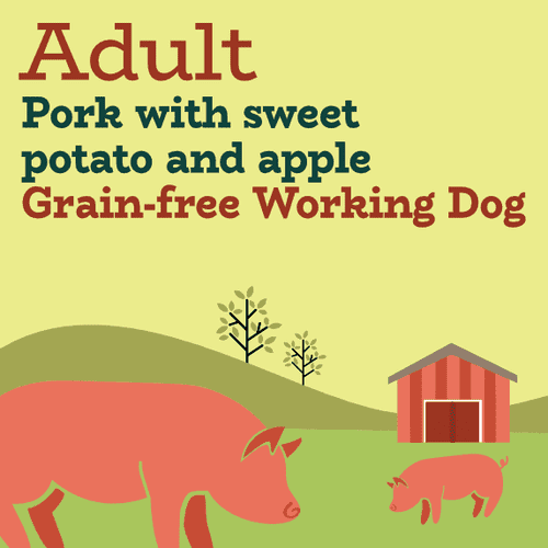 Pork and sweet potato with apple grain free working dog food