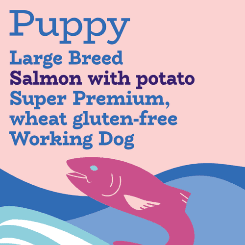 Puppy food large breed salmon and potato working dog