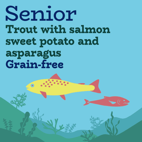 Salmon trout grain free senior dog food without chicken