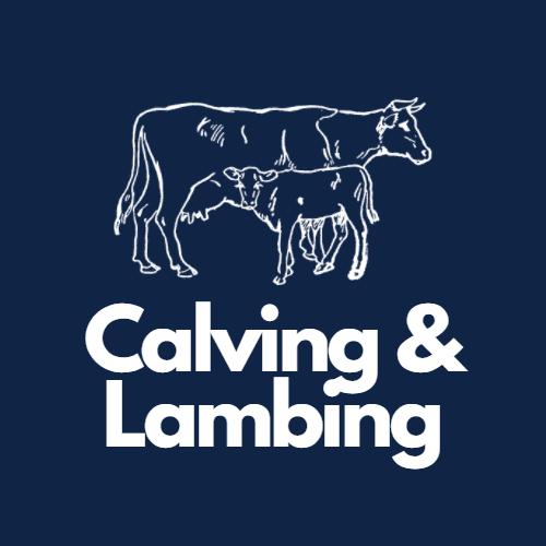 Calving & Lambing
