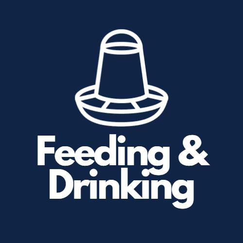 Feeding & Drinking