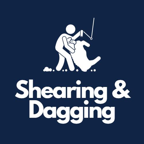 Shearing & Dagging