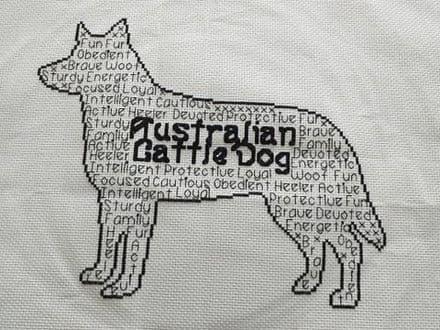 Australian Cattle Dog In Words