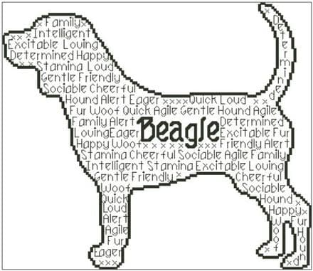 Beagle In Words