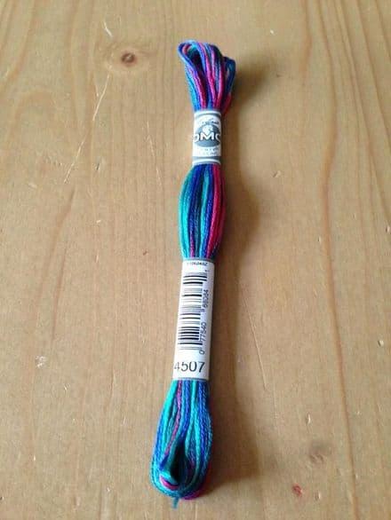 DMC Coloris 4507