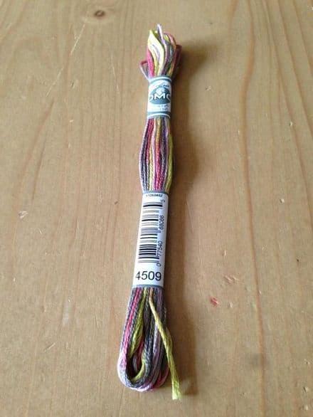 DMC Coloris 4509