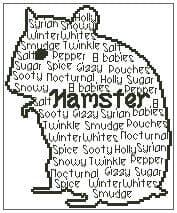 In Words - Hamster Personalised