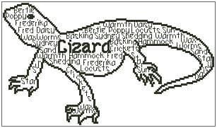In Words - Lizard Personalised