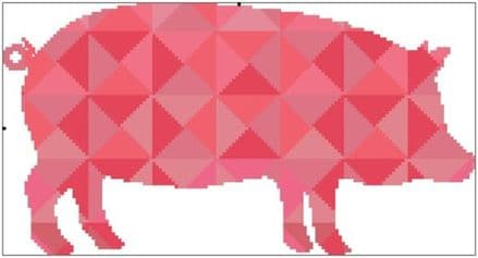 Kaleidoscope Pig