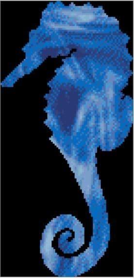 Seahorse Spirit Guide