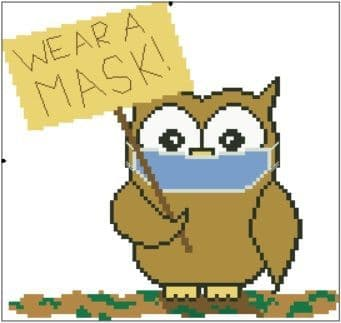 Wear a Mask Ollie Owl