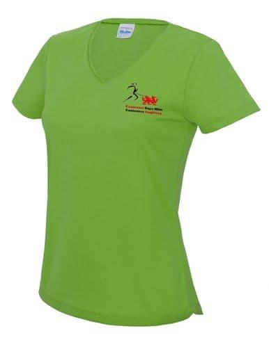Anglesey Women's V-neck T-shirt