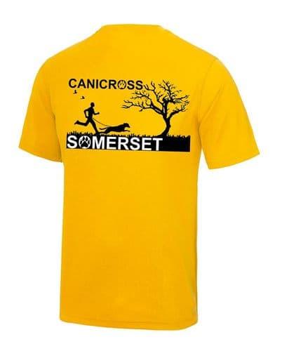 Canicross Somerset