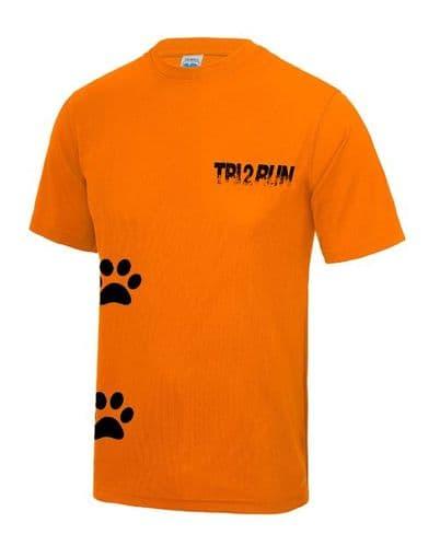 Tri 2 Run technical t-shirt