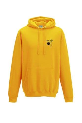 Unisex Somerset hoodie
