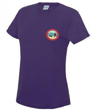 West Glamorgan Canicross tech t-shirt